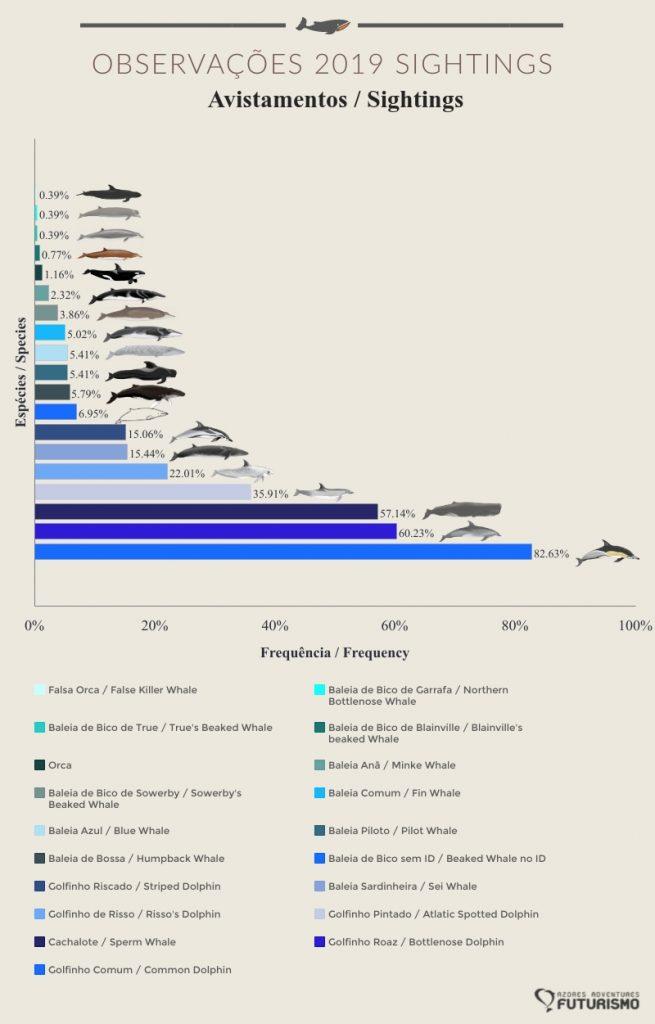 Futurismo 2019 cetaceans sightings graph sao miguel