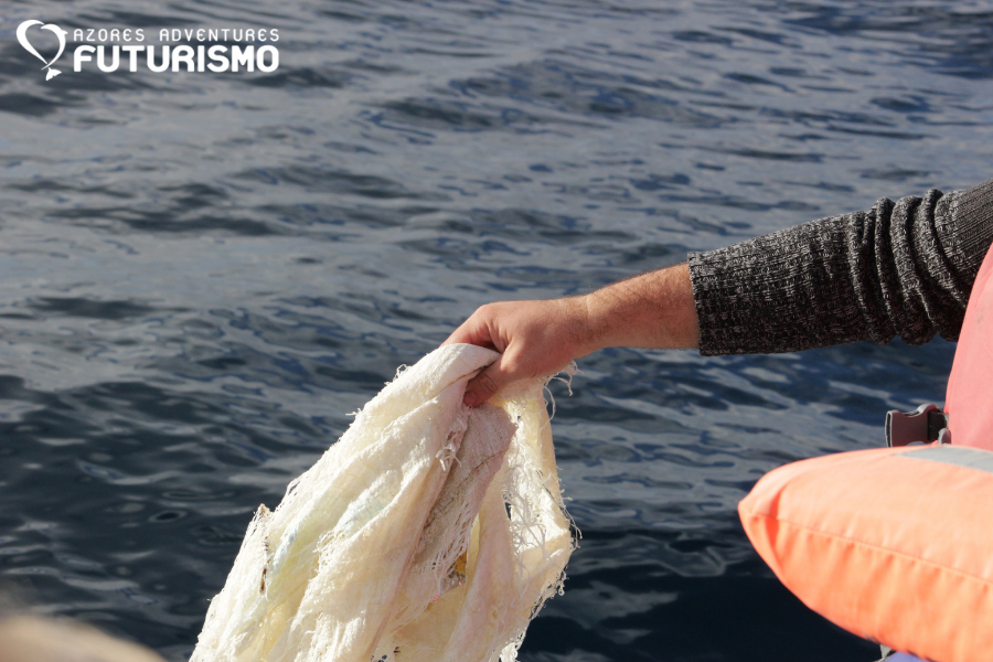 Miguel removed a marine litter during Futurismo whale watching azores tour
