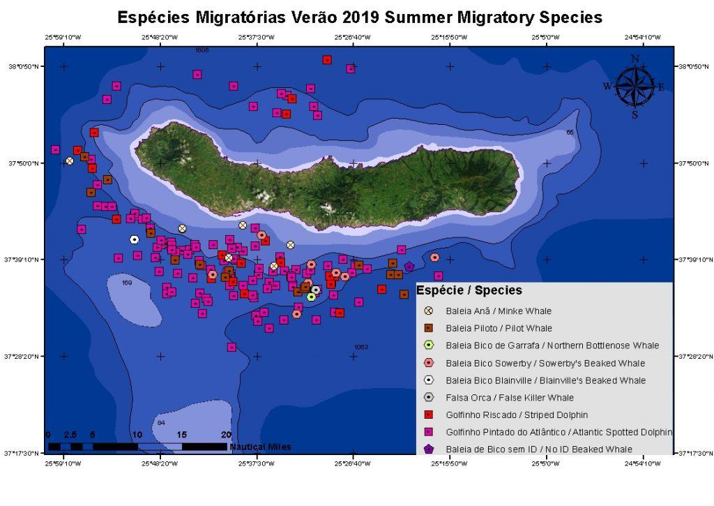 Futurismo summer migration sao miguel