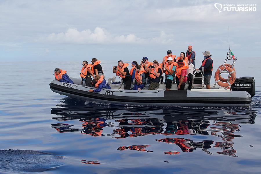 Futurismo Whale Watching Azores João Vigia