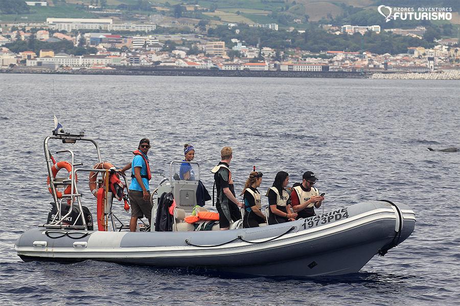 Futurismo Whale Watching Azores Marine