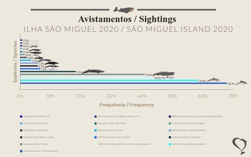 sighting statistics 2020 1